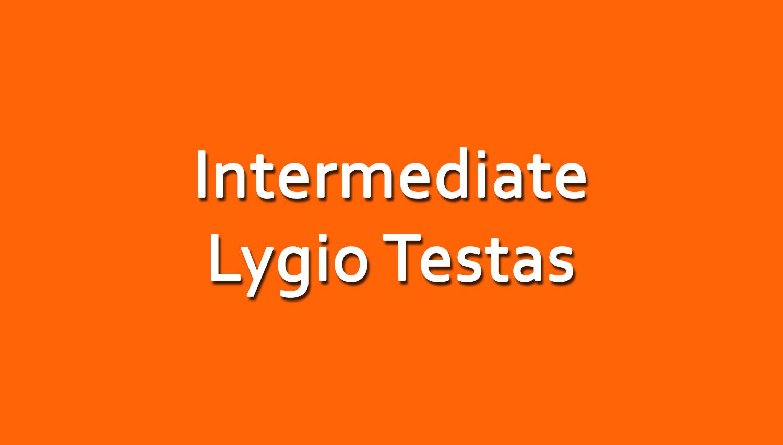 Anglų Kalbos Intermediate Lygio Testas